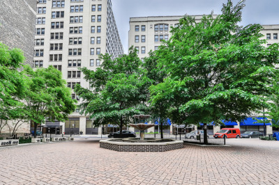 Cook County Condo/Townhouse New: 680 South Federal Street #601