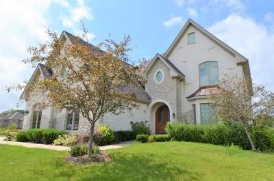 Homer Glen Single Family Home For Sale: 16136 Stonebridge Drive