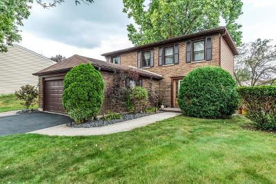 Carol Stream Single Family Home For Sale: 571 Iroquois Trail