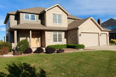Frankfort Single Family Home For Sale: 19907 Laporte Meadows Drive