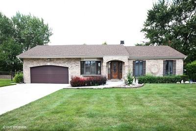 Bartlett IL Single Family Home New: $264,900