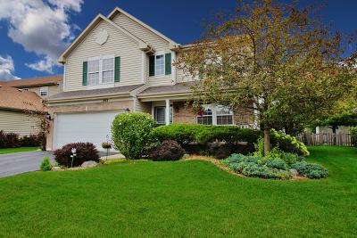 Round Lake Single Family Home New: 243 Switchgrass Drive
