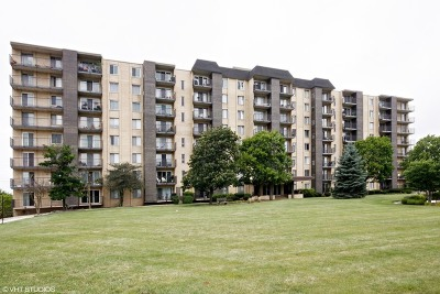 Downers Grove Condo/Townhouse New: 5400 Walnut Avenue #211