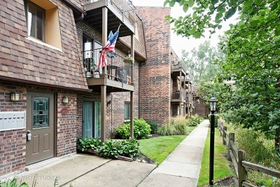 Lombard Condo/Townhouse Contingent: 1406 South Fairfield Avenue #59C