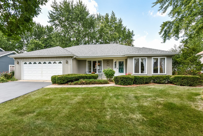 Naperville Single Family Home New: 919 Queensbury Court