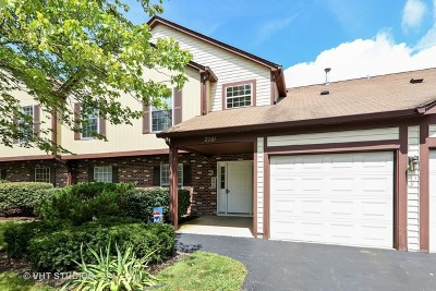 Naperville Condo/Townhouse New: 2201 Worthing Drive #202C