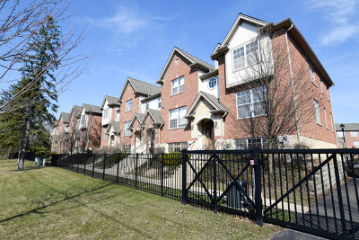 Mount Prospect Single Family Home For Sale: 216 River Front Drive