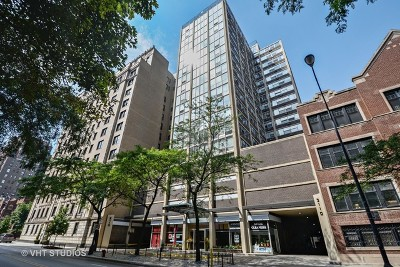 Cook County Condo/Townhouse New: 3110 North Sheridan Road #1405