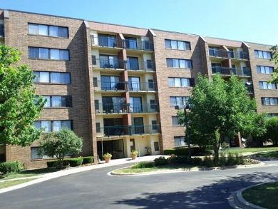 Hoffman Estates Condo/Townhouse For Sale: 1800 Huntington Boulevard #510
