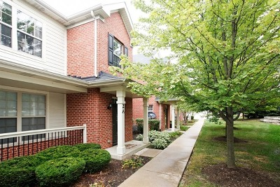 Glen Ellyn Condo/Townhouse New: 1032 Swift Road #2A