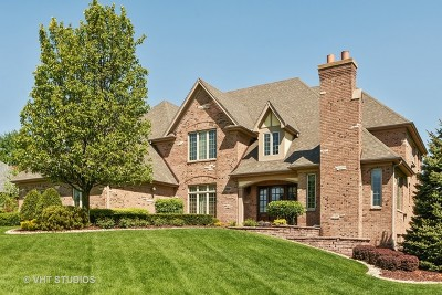 Orland Park Single Family Home Contingent: 10820 Green Manor Court