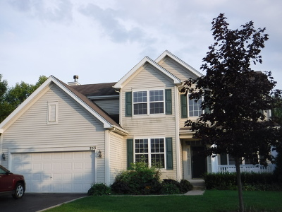 Gilberts Single Family Home New: 253 Woodland Park Circle