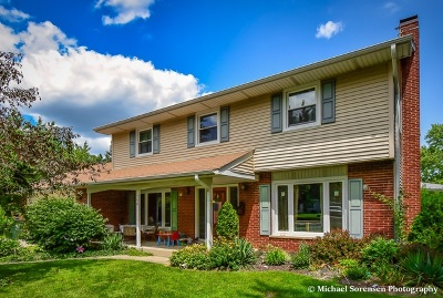 Palatine Single Family Home New: 750 East Baldwin Road