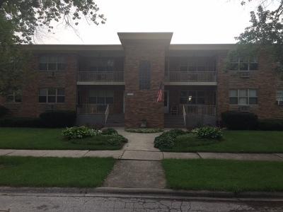 La Grange Park Condo/Townhouse For Sale: 1117 Homestead Road #4
