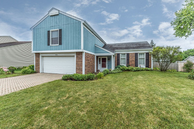 Naperville Single Family Home New: 422 Newport Drive