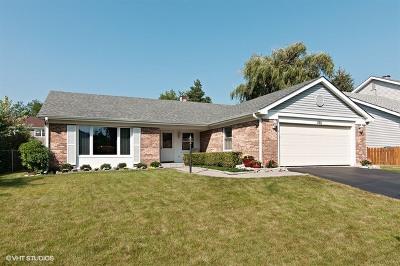 Bartlett Single Family Home New: 1192 Pointsetta Lane