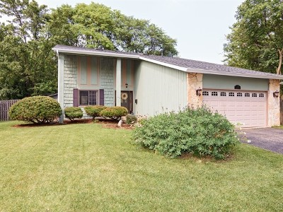 Palatine Single Family Home New: 78 East Pepper Tree Drive
