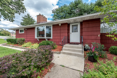 Downers Grove Single Family Home New: 1041 55th Street