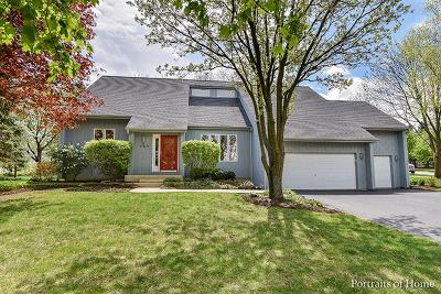 Glen Ellyn Single Family Home New: 147 Derby Glen Drive