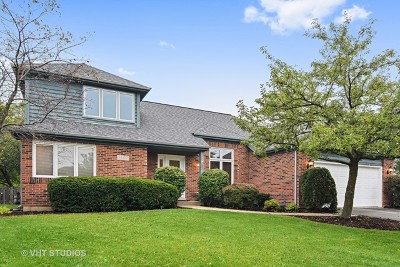 Naperville Single Family Home New: 1107 Prelude Court