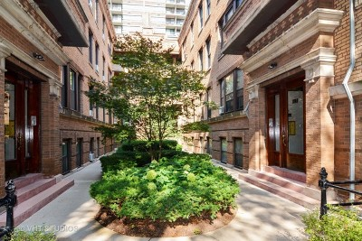 Cook County Condo/Townhouse New: 2743 North Hampden Court #2E