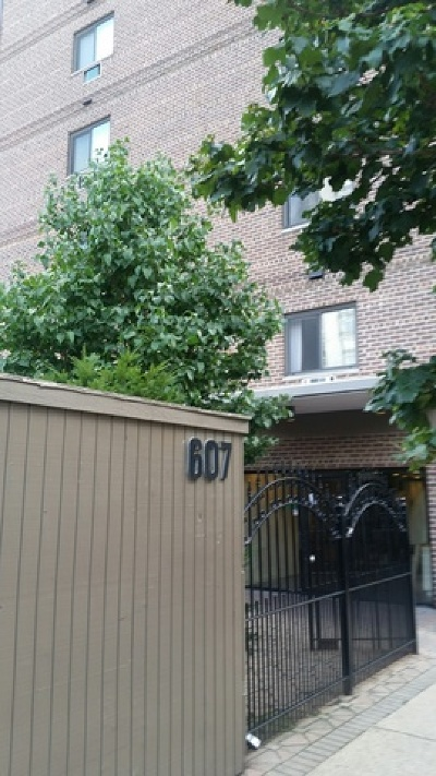 Cook County Condo/Townhouse New: 607 West Wrightwood Avenue #301