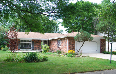 Palatine Single Family Home Contingent: 87 King Henry Court