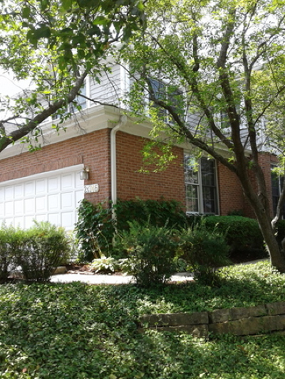 Glen Ellyn Condo/Townhouse New: 2s746 Lakeside Drive #E