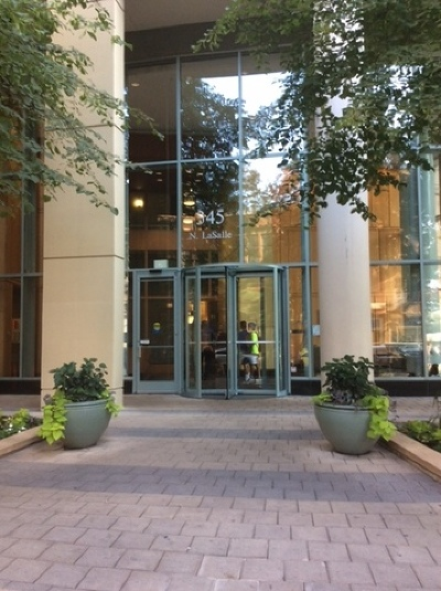 Cook County Condo/Townhouse New: 345 North Lasalle Street #1205