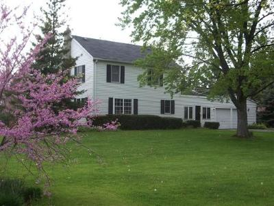 Lake Villa, Lindenhurst Single Family Home For Sale: 38792 North Fairfield Road