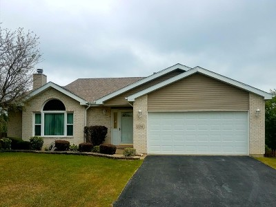 Steger Single Family Home New: 226 Lakeview Court