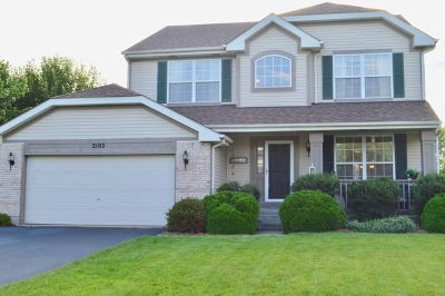 McHenry Single Family Home New: 2103 Olde Mill Lane