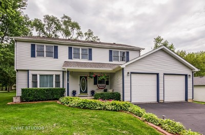Island Lake Single Family Home For Sale: 101 West Burnett Road