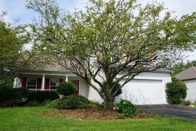 Plainfield Single Family Home New: 25536 West Gateway Circle