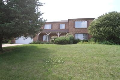 Homer Glen Single Family Home For Sale: 17708 South McCarron Road