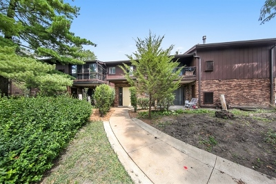 Westmont Condo/Townhouse New: 67 West 64th Street #101