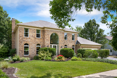 Naperville Single Family Home New: 2242 Trillium Lane