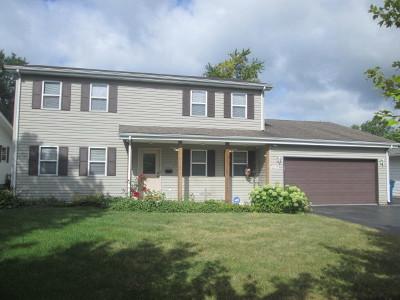 Steger Single Family Home New: 3632 Emerald Avenue