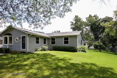 Island Lake Single Family Home New: 411 Woodbine Avenue