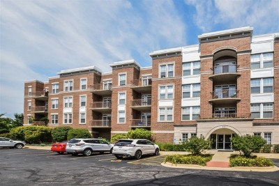 Palatine Condo/Townhouse New: 435 West Wood Street #413A