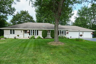 Naperville IL Single Family Home New: $400,000