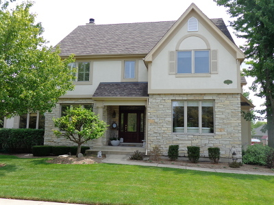 St. Charles Single Family Home New: 4n407 Fox Mill Boulevard