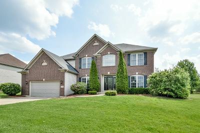 Batavia Single Family Home New: 372 Stafney Drive