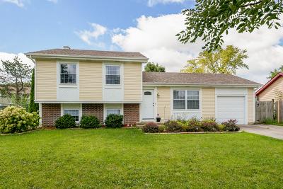 Bartlett Single Family Home New: 913 Island Court