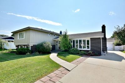 Addison Single Family Home For Sale: 808 North Harrow Court