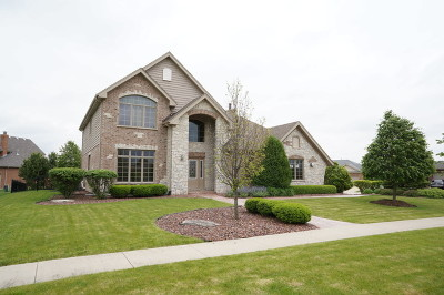 New Lenox Single Family Home For Sale: 2892 McKenna Drive