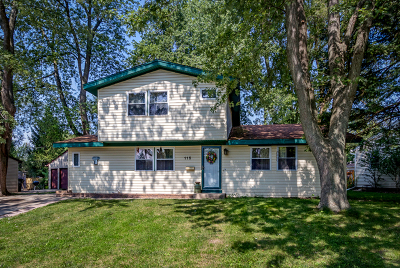 Carpentersville Single Family Home New: 115 Mora Road