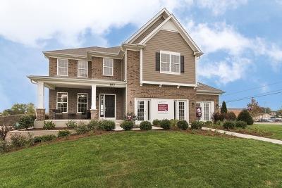 Hoffman Estates Single Family Home For Sale: 3599 Elsie Lot# 23 Lane