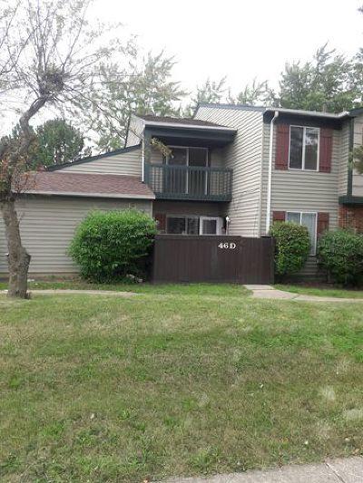 Bolingbrook Condo/Townhouse New: 46 Fernwood Drive #D
