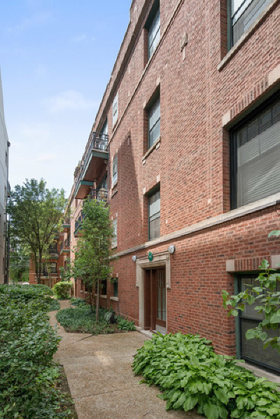 Cook County Condo/Townhouse New: 653 West Melrose Street #1S